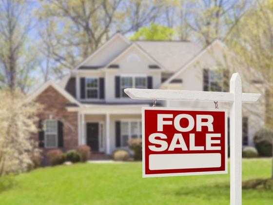 NWA Real Estate: a broad market offering plenty of options